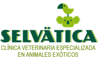 selvatica Logo